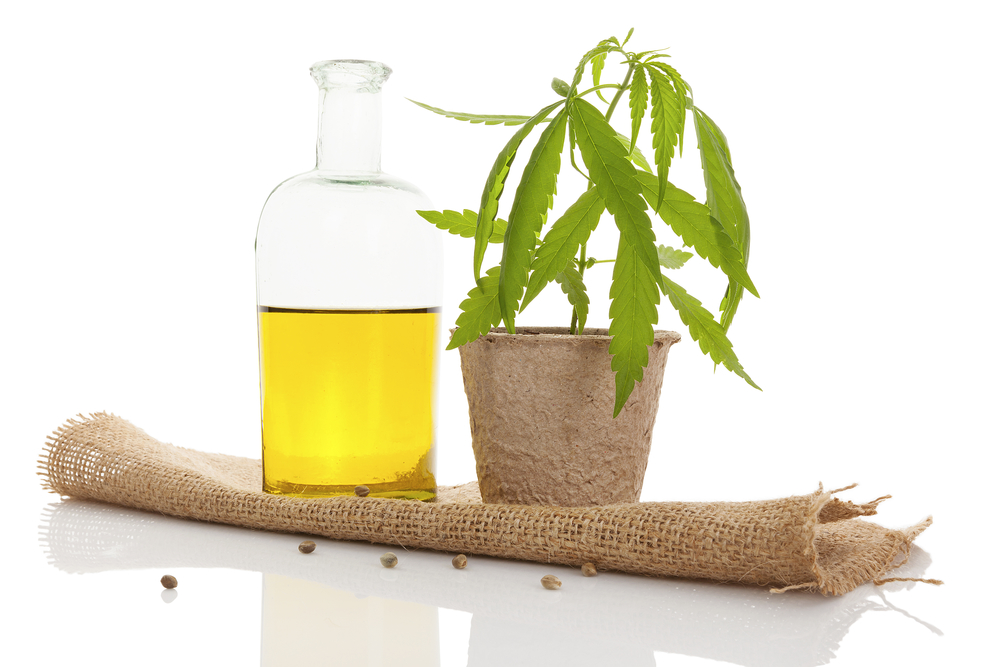 Hemp Seed Oil and Hemp Oil Extracts with CBD and other Cannabinoids